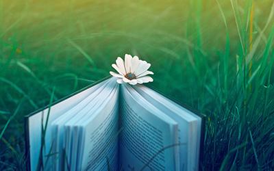 چطور میشود کتاب خوان شویم و بمانیم؟