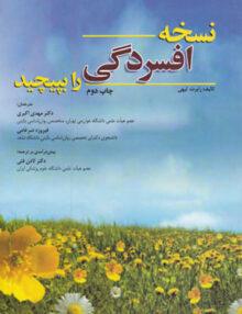 Untitled 5 copy 35 220x286 - نسخه افسردگی را بپیچید, انتشارات ابن سینا
