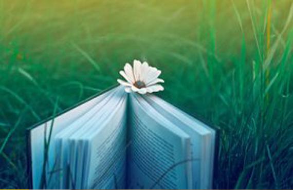 یونیک کتاب